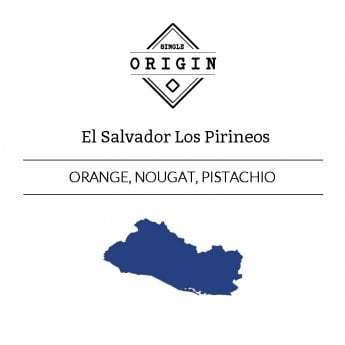 Rounton Coffee Ltd: El Salvador, Los Pirineos, Honey Process