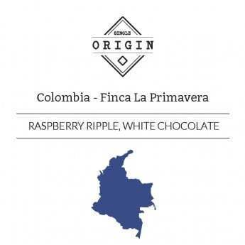 Rounton Coffee Roasters: Colombia, Finca La Primavera, Extended Fermentation, Washed