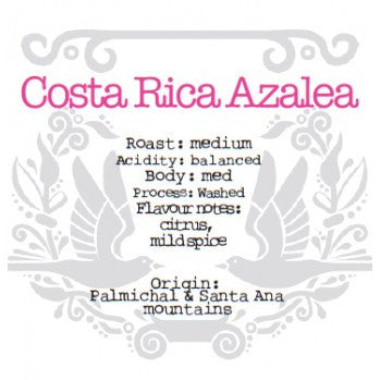 The Crafted Coffee Company - Cost Rica Azalea