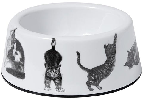 Ashdene Casual Cats Small Pet Bowl