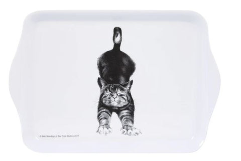 Ashdene Casual Cats Scatter Tray