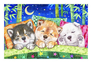 Puzzle Pintoo - Kayomi - Happy Dream. 600 piezas-Doctor Panush