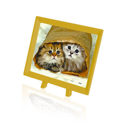 Puzzle Pintoo - XS - Persian Kitties to Go. 150 piezas