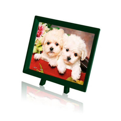Puzzle Pintoo - XS - Puppies in gift box. 150 piezas