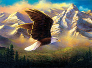 Puzzle SunsOut -Abraham Hunter - Flying High. 1000 piezas-Puzzle-SunsOut-Doctor Panush