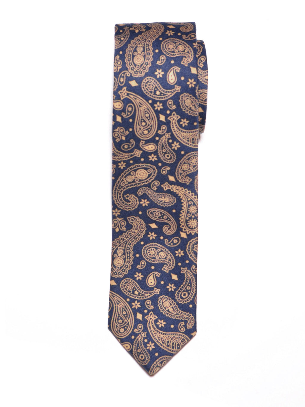 Blue Paisley Print Cotton Tie