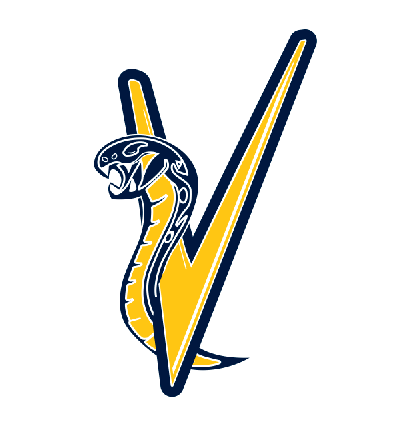 Sarasota Vipers Baseball