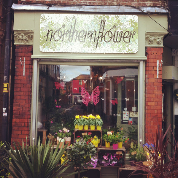 Northern Flower shop front
