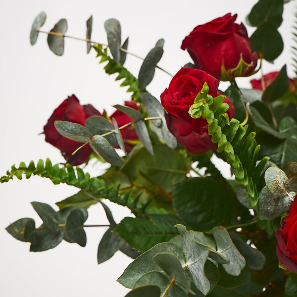 True Romance (Red roses / Eucalyptus / Ferns)