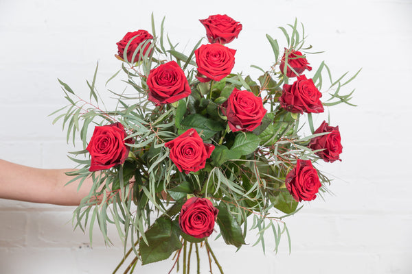 A dozen of THE BEST red roses you can get!