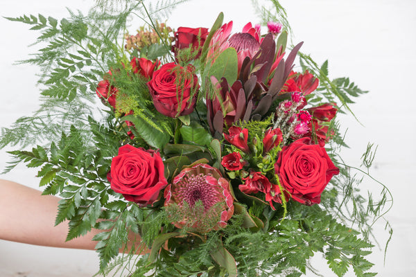 A stunning bouquet for that real 'wow' factor - a modern combination of 'Naomi' red roses, protea, safari sunset, alstromeria and the delightful asparagus fern foliage.