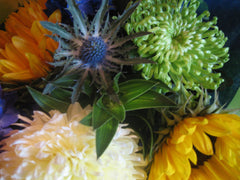 Close up sunflower, green chrysanthemum and blue thistle