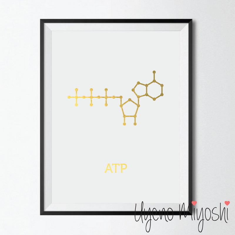 Chemical Molecule - ATP