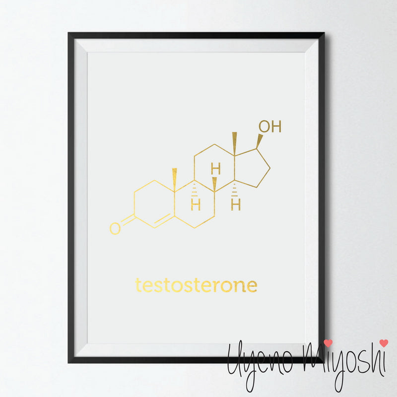Chemical Molecule - Testosterone