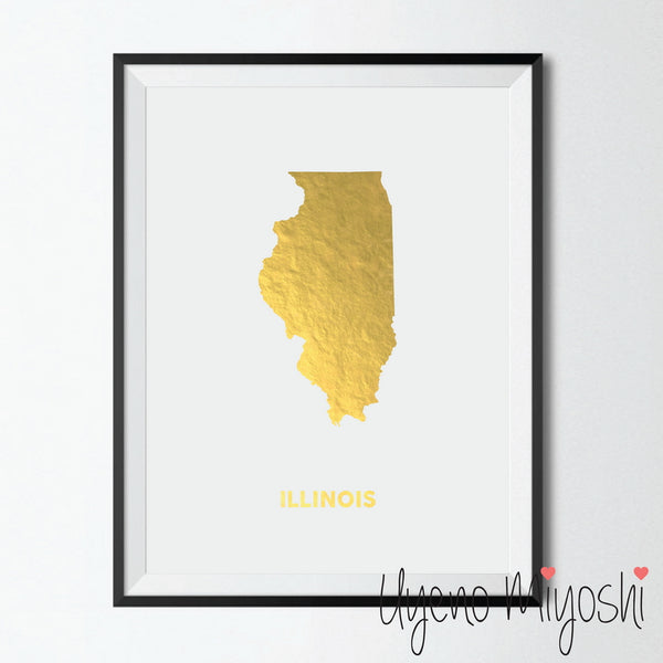 Map - Illinois