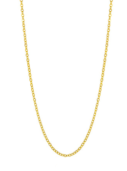 Long Gold Finished Chain