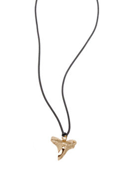 Shark Tooth Cord Necklace
