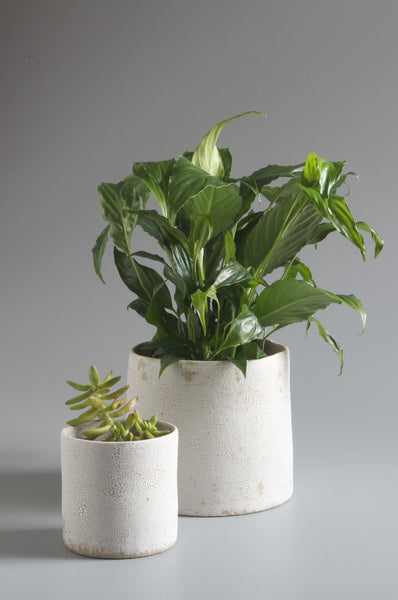 Sharon Alpren White Crackle Planter - Small
