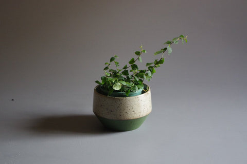 Tara Shackell Rock Planter - Medium