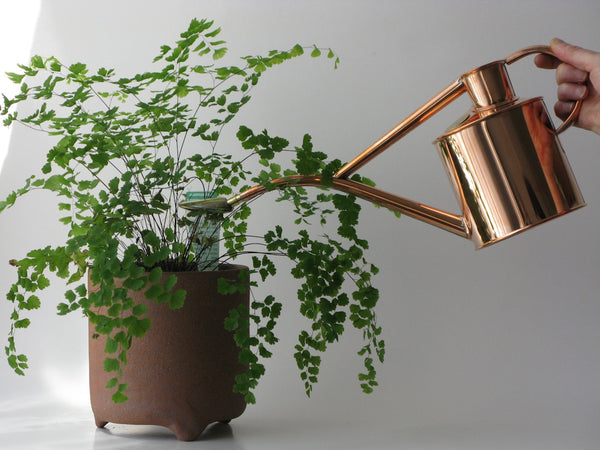 Copper 1 litre indoor watering can