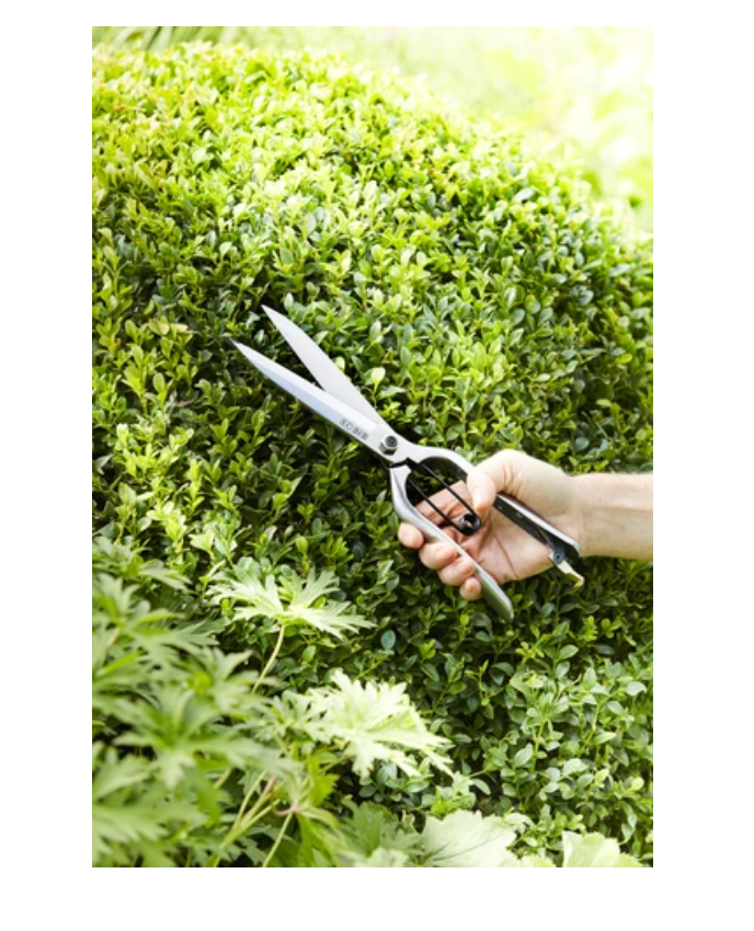 Sophie Conran Topiary Shears