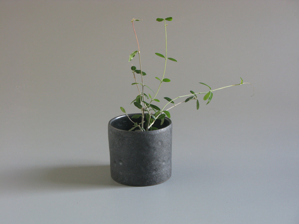 Sharon Alpren Black Planter - small