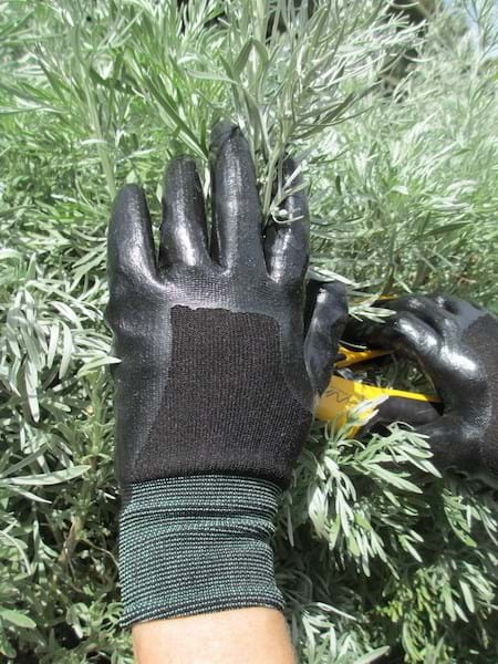 Weeding Gloves