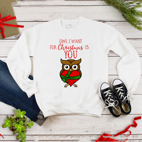 Owl I Want for Christmas Is You Plus Size Long Sleeve Women's Autumn Sweatshirts