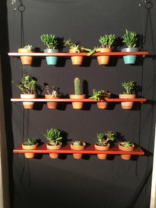 "15 Pot Plant Shelf ""Shwing"""