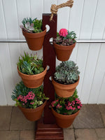 Load image into Gallery viewer, 6 Pot Mahogany Tower from Long Beach Ca. Beautifully displayed with succulents
