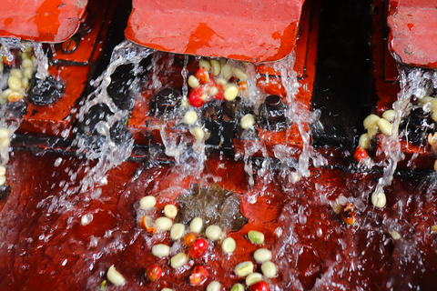 De-pulping station for beans