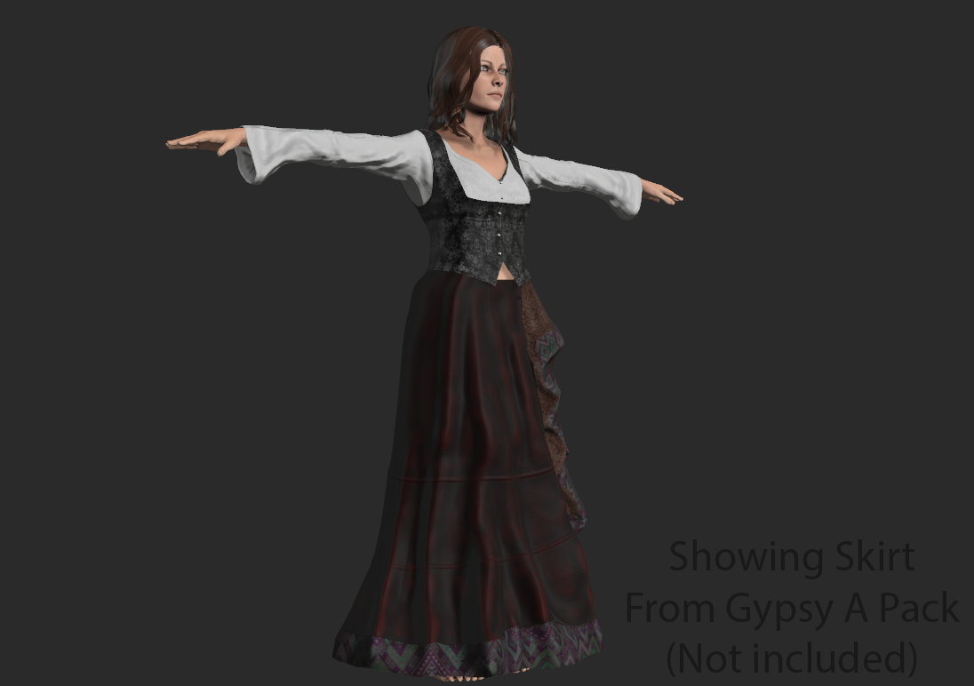 Gypsy Female Costume B