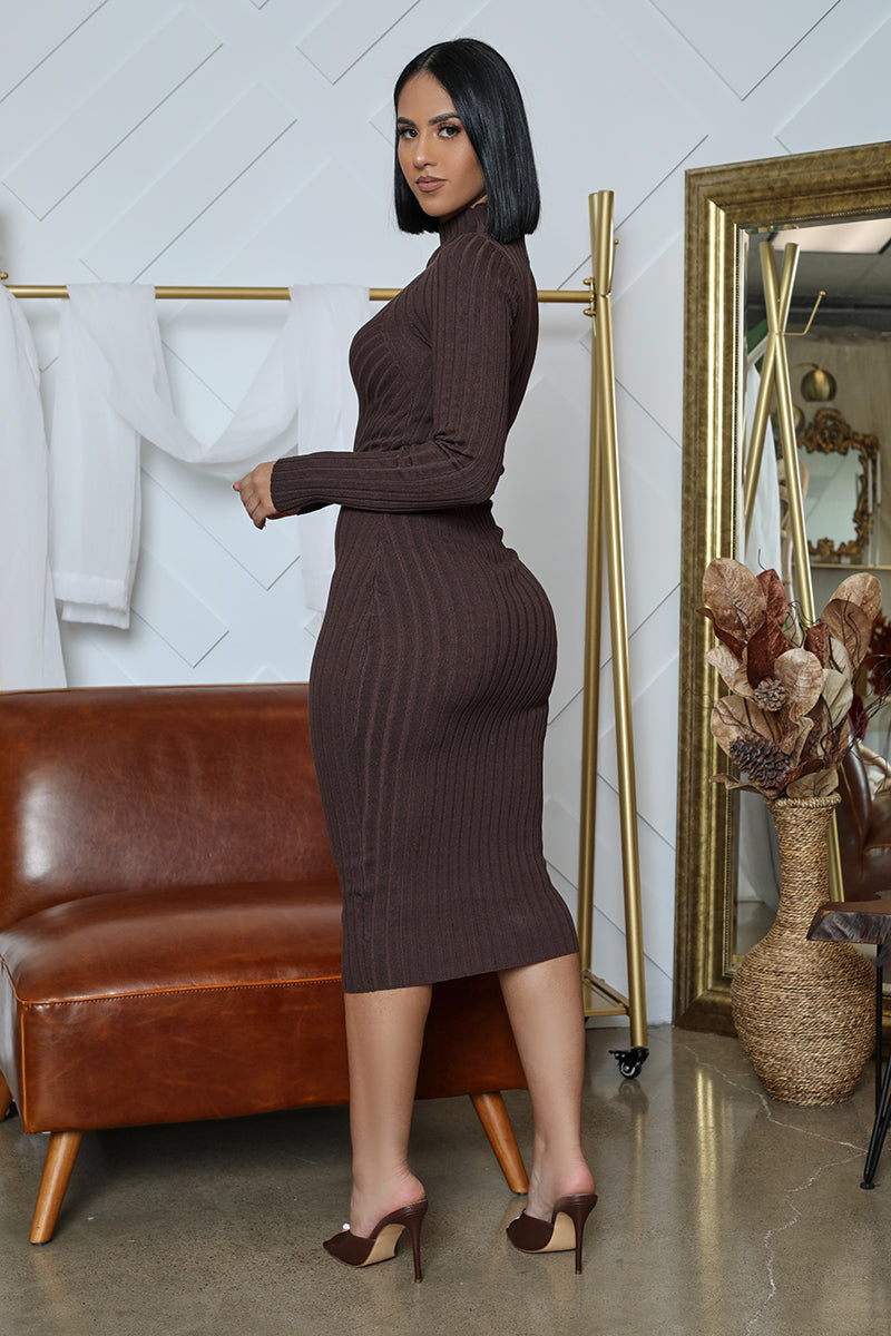 Ribbed Bodycon Maxi Dress (Brown)