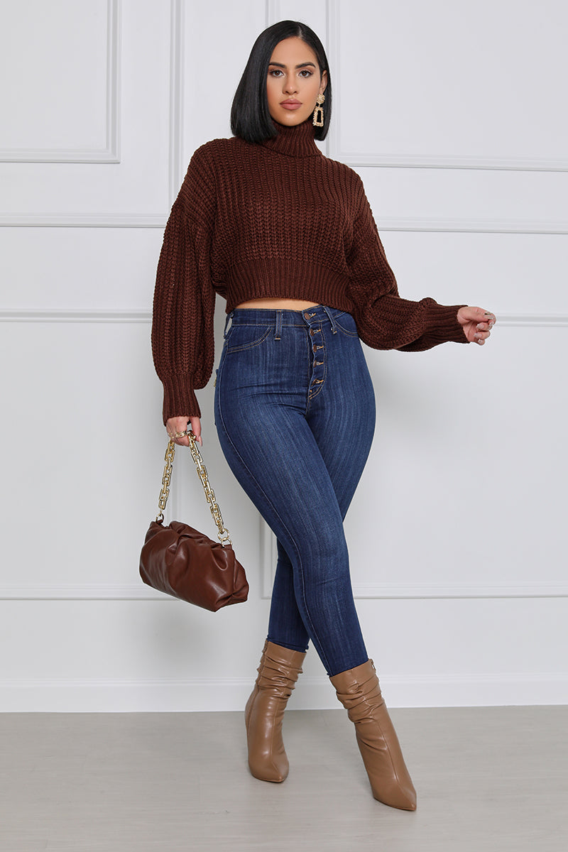 Heart & Soul Cropped Turtle Neck Sweater (Brown)