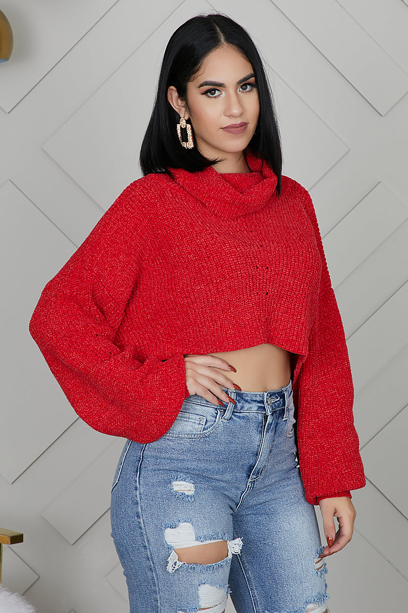 So Plush Crop Sweater (Red)