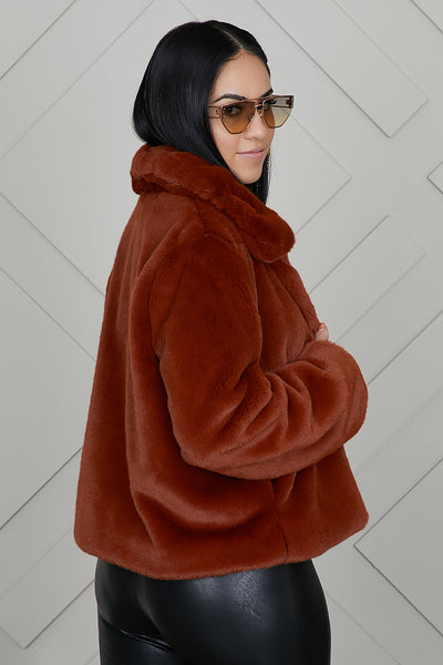 Cozy Crop Coat (Brown)- FINAL SALE