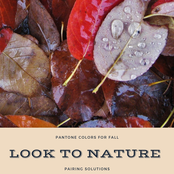 Fall Color Trends For 2018