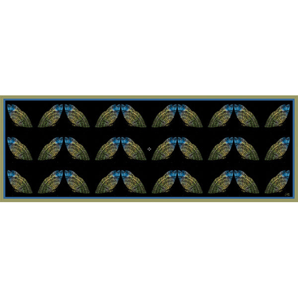 Chetna Singh black butterfly print long silk scarf.