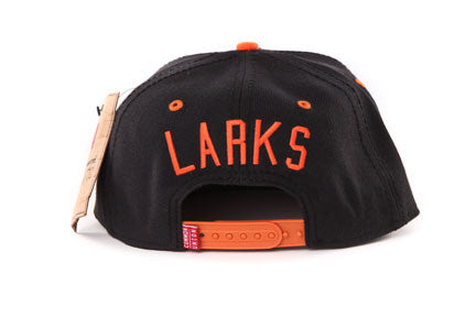 Oakland Larks Two Tone Snapback