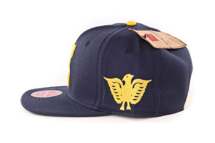 Newark Eagles Snapback