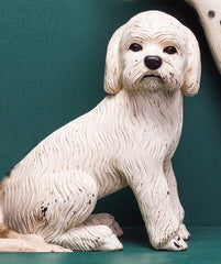 PUPPY POODLE, WHITE
