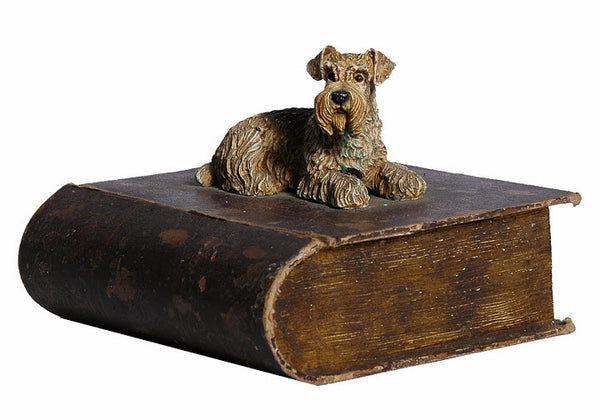 Schnauzer On Book Box