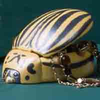 COLORADO BEETLE JEWELRY BOX
