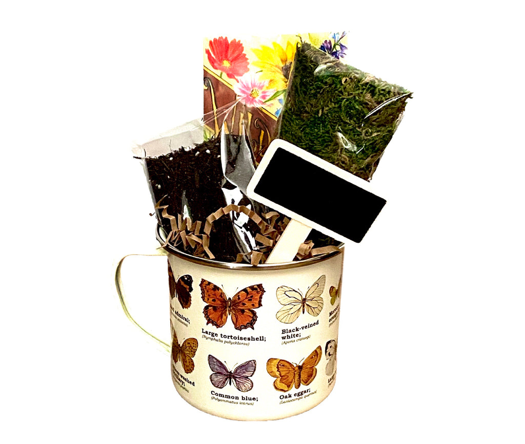 Seed Planting Gift in Enamel Botanical Cup