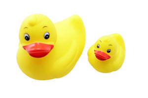 Floating Duck Set