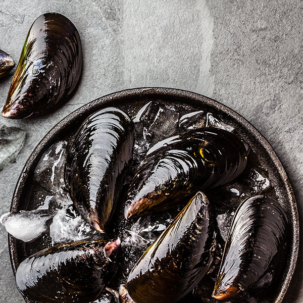 XL Whole Shell Chilean Mussels
