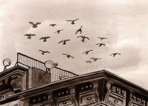 Pigeons in New York, signed print of a painting by John Tebeau