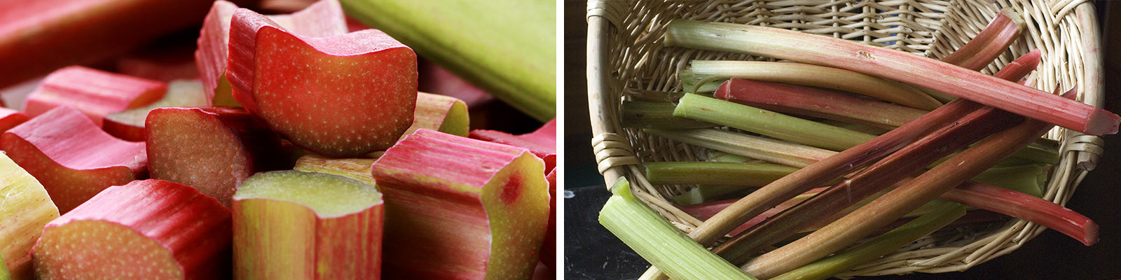 rhubarb orchard header
