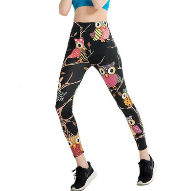 Colorful Owl Stylish Leggings