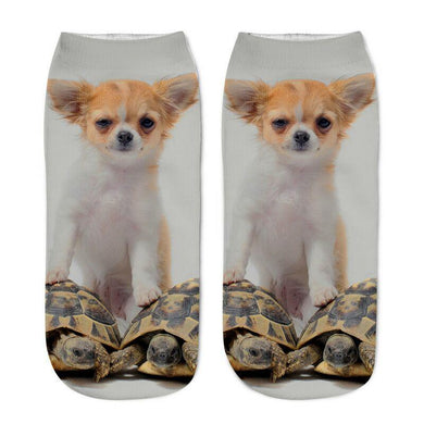 Unisex 3D White Dog Printed Socks - 6 Pack